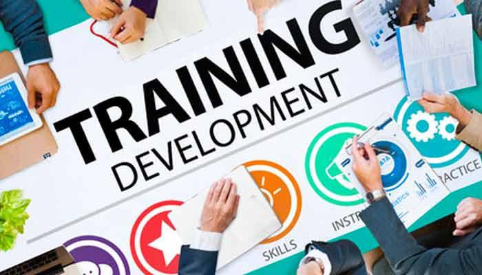 summer-vocational-training